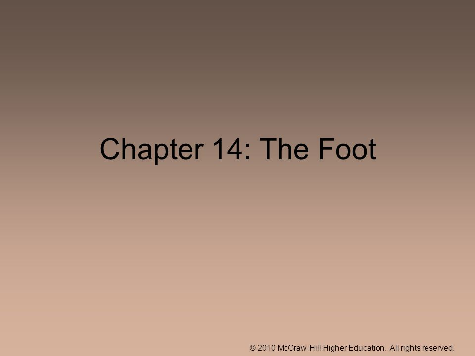 © 2010 McGraw-Hill Higher Education. All rights reserved. Chapter 14: The Foot