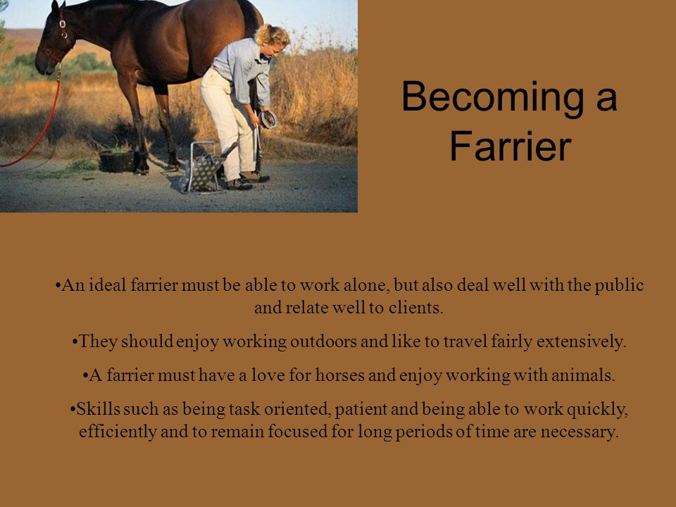 Becoming a Farrier An ideal farrier must be able to work alone, but also deal well with the public and relate well to clients.