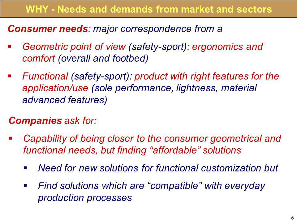 5 WHY - Needs and demands from market and sectors Consumer needs: major correspondence from a Geometric point of view (safety-sport): ergonomics and comfort (overall and footbed) Functional (safety-sport): product with right features for the application/use (sole performance, lightness, material advanced features) Companies ask for: Capability of being closer to the consumer geometrical and functional needs, but finding affordable solutions Need for new solutions for functional customization but Find solutions which are compatible with everyday production processes