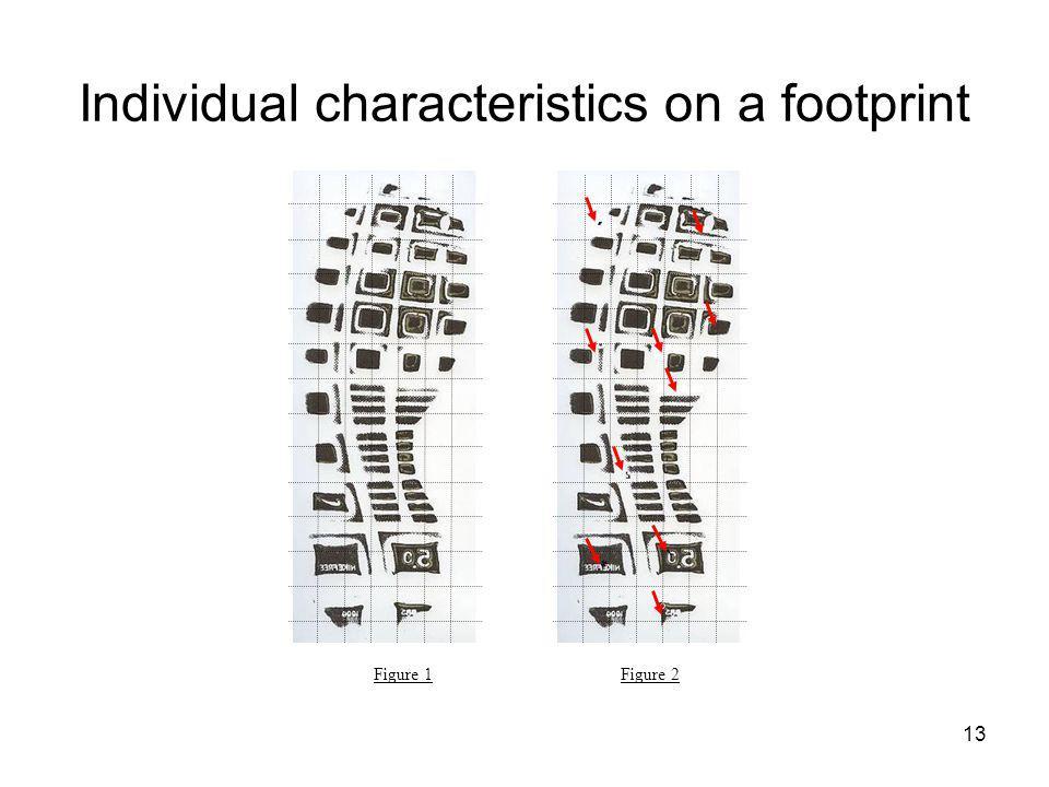 13 Individual characteristics on a footprint Figure 1 Figure 2