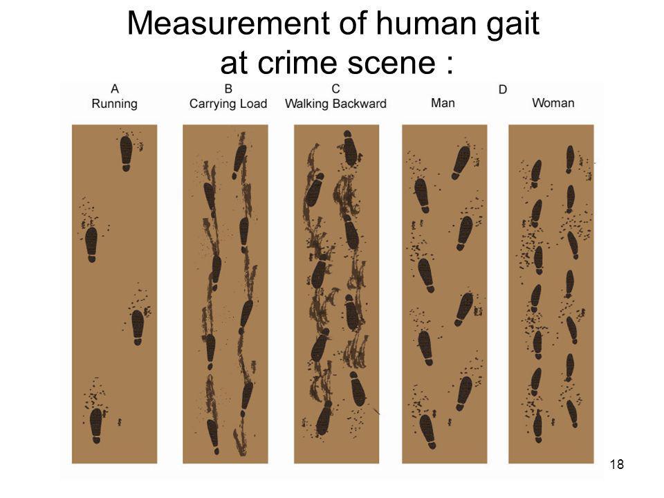 18 Measurement of human gait at crime scene :
