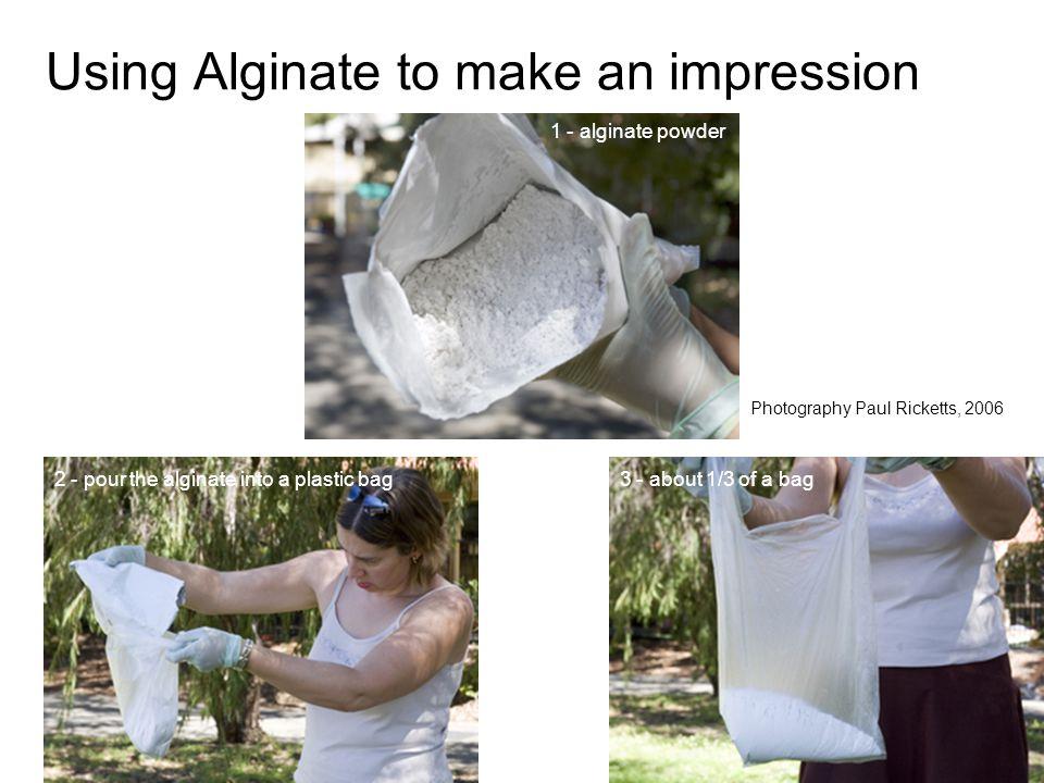 Using Alginate to make an impression 1 - alginate powder 2 - pour the alginate into a plastic bag3 - about 1/3 of a bag Photography Paul Ricketts, 200