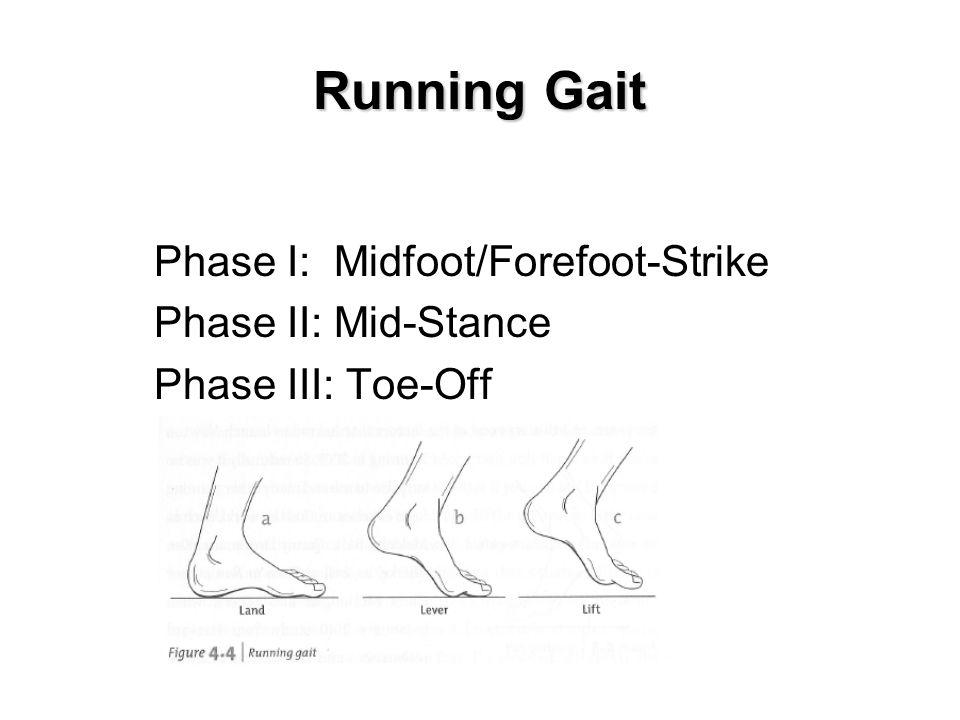 Running Gait Phase I: Midfoot/Forefoot-Strike Phase II: Mid-Stance Phase III: Toe-Off Insert fig.