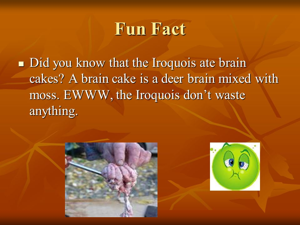 Fun Fact Did you know that the Iroquois ate brain cakes.
