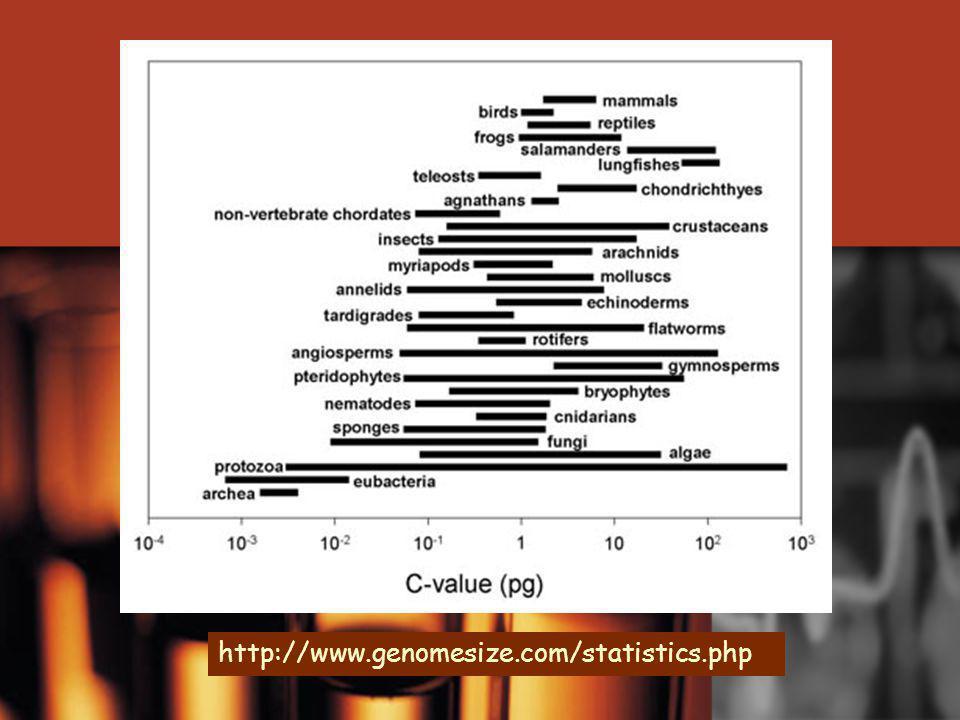 http://www.genomesize.com/statistics.php