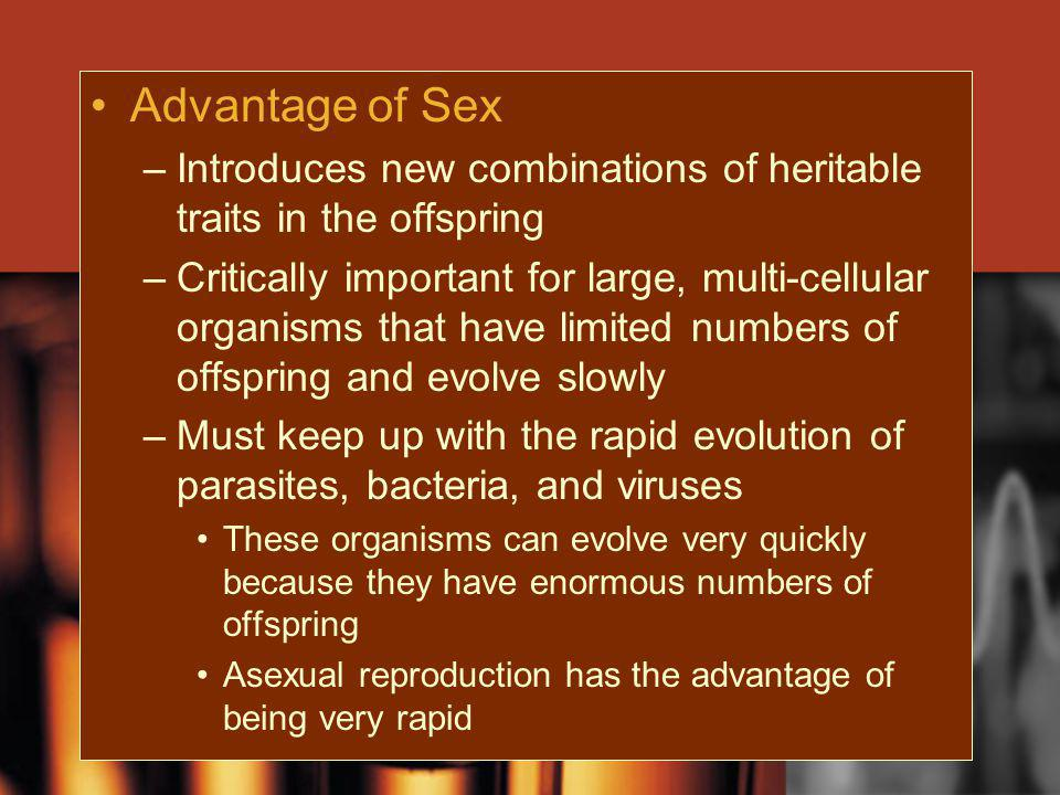 Advantage of Sex –Introduces new combinations of heritable traits in the offspring –Critically important for large, multi-cellular organisms that have
