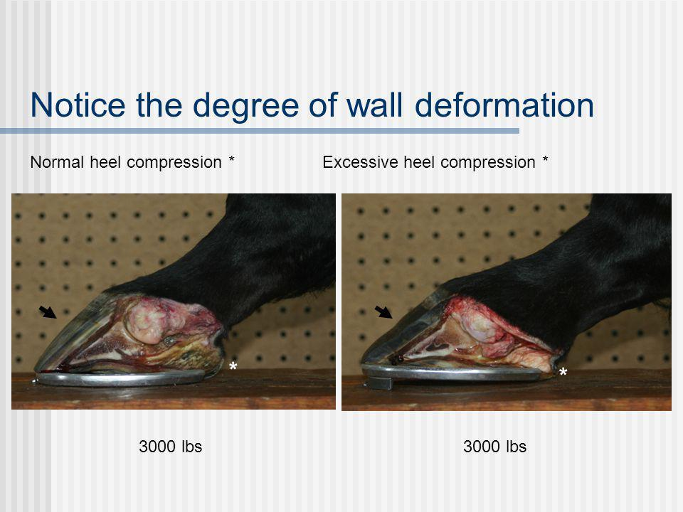 Normal heel compression * Excessive heel compression * 3000 lbs Notice the degree of wall deformation * *