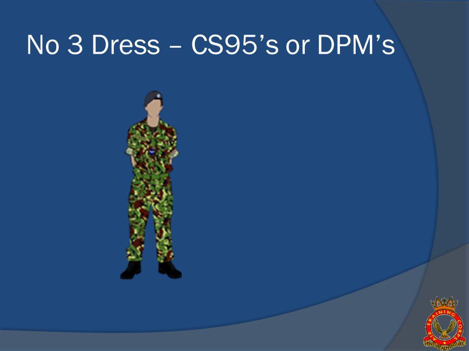 No 3 Dress – CS95s or DPMs