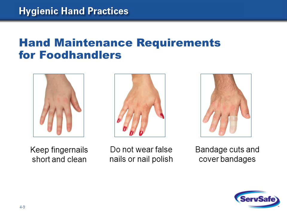 4-9 Hand Maintenance Requirements for Foodhandlers Keep fingernails short and clean Do not wear false nails or nail polish Bandage cuts and cover band