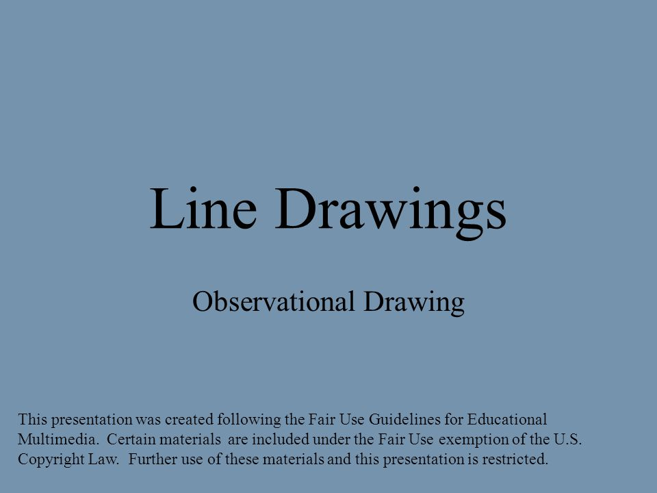 Line Drawings Observational Drawing This presentation was created following the Fair Use Guidelines for Educational Multimedia.