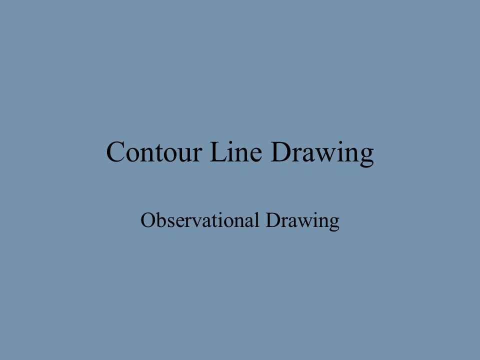 Contour Line Drawing Observational Drawing