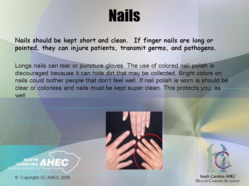 © Copyright, SC AHEC, 2008 Nails Nails should be kept short and clean.