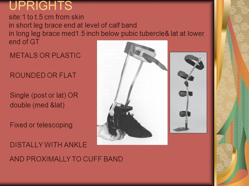 UPRIGHTS site:1 to t.5 cm from skin in short leg brace end at level of calf band in long leg brace med1.5 inch below pubic tubercle& lat at lower end