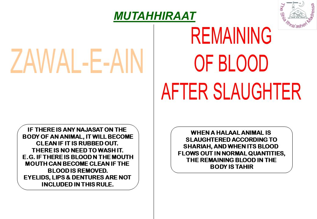 WHEN A HALAAL ANIMAL IS SLAUGHTERED ACCORDING TO SHARIAH, AND WHEN ITS BLOOD FLOWS OUT IN NORMAL QUANTITIES, THE REMAINING BLOOD IN THE BODY IS TAHIR
