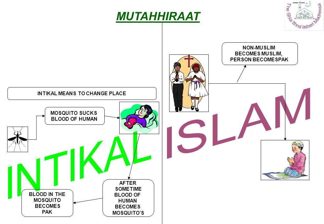 TABAIYAT MEANS WHEN A NAJIS THING BECOMES CLEAN ON ACCOUNT OF ANOTHER THING BEING CLEANSED NON-MUSLIM BECOMES MUSLIM, NA-BAALIGH CHILDREN BECOME PAK AUTOMATICALLY WINE TURNS INTO VINEGAR BOTTLE BECOMES PAK ALSO MUTAHHIRAAT