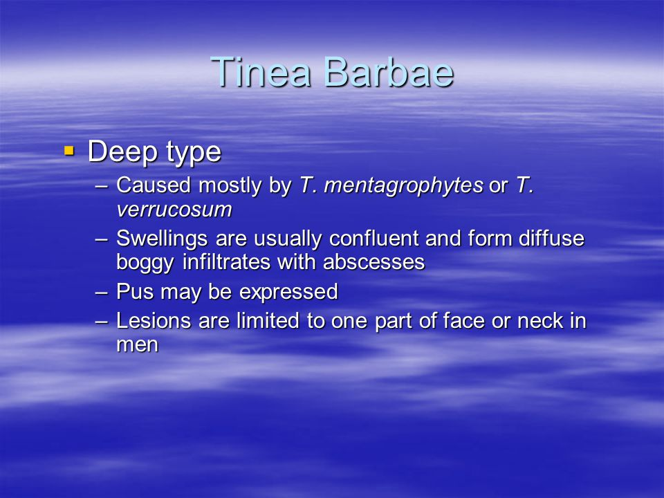 Tinea Barbae Deep type Deep type –Caused mostly by T. mentagrophytes or T. verrucosum –Swellings are usually confluent and form diffuse boggy infiltra