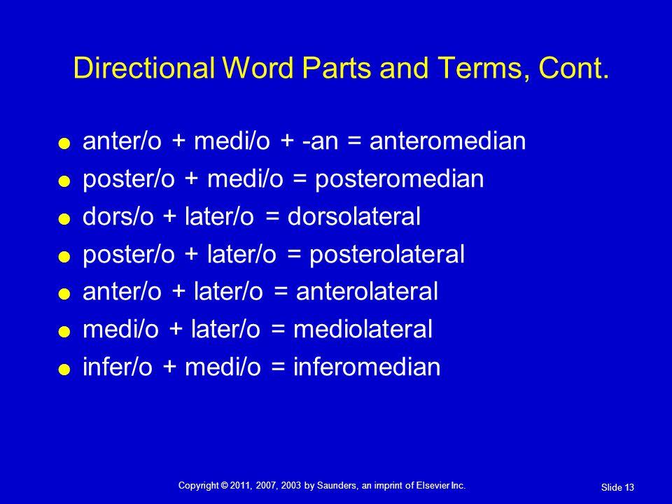 anter/o + medi/o + -an = anteromedian poster/o + medi/o = posteromedian dors/o + later/o = dorsolateral poster/o + later/o = posterolateral anter/o + later/o = anterolateral medi/o + later/o = mediolateral infer/o + medi/o = inferomedian Directional Word Parts and Terms, Cont.
