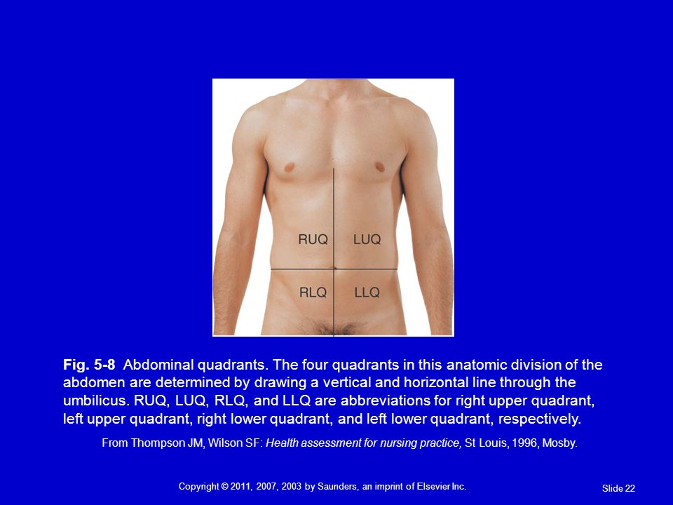 Fig. 5-8 Abdominal quadrants. The four quadrants in this anatomic division of the abdomen are determined by drawing a vertical and horizontal line thr