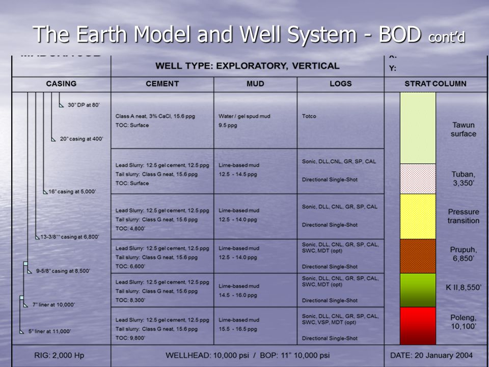 The Earth Model and Well System - BOD contd