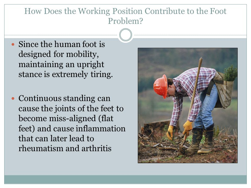 How Does the Working Position Contribute to the Foot Problem? Since the human foot is designed for mobility, maintaining an upright stance is extremel