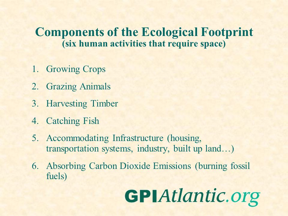 Components of the Ecological Footprint (six human activities that require space) 1.Growing Crops 2.Grazing Animals 3.Harvesting Timber 4.Catching Fish 5.Accommodating Infrastructure (housing, transportation systems, industry, built up land…) 6.Absorbing Carbon Dioxide Emissions (burning fossil fuels)