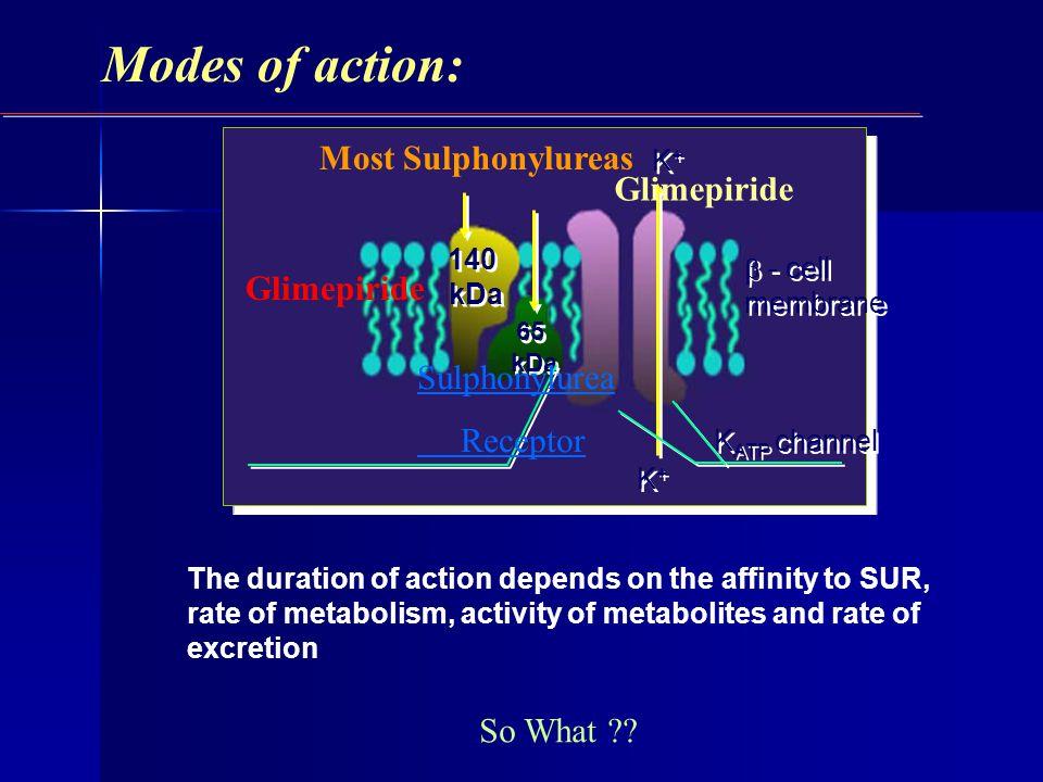 K+K+ K+K+ 140 kDa 140 kDa 65 kDa 65 kDa - cell membrane K+K+ K+K+ K ATP channel Modes of action: Most Sulphonylureas Glimepiride Sulphonylurea Recepto
