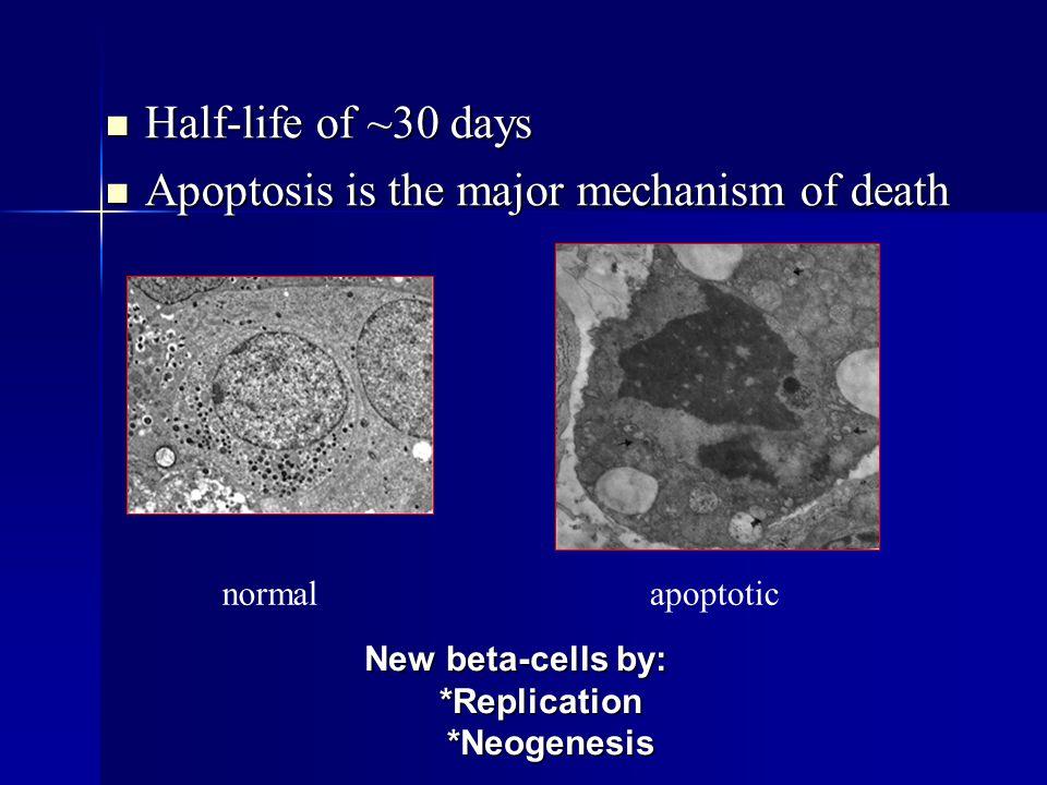 Glimepiride Beneficial Effects on HDL-C and Adiponectin Motoyama K, et al.