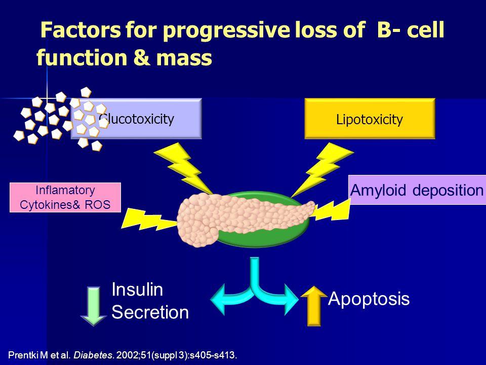 Factors for progressive loss of B- cell function & mass Glucotoxicity Lipotoxicity l Apoptosis Insulin Secretion Prentki M et al. Diabetes. 2002;51(su