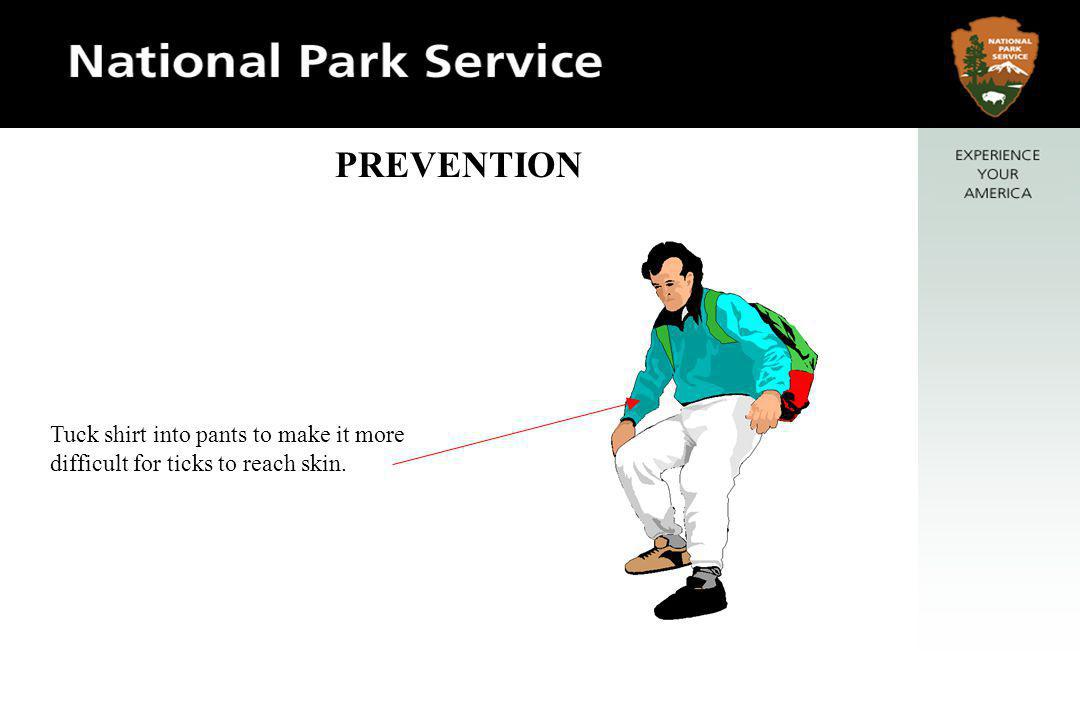 Wear long-legged pants and, for extra protection, long-sleeved shirt and hat.