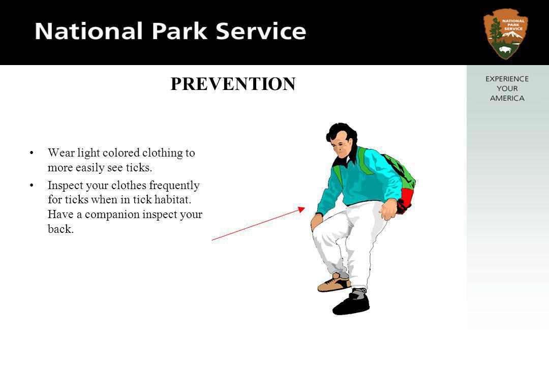 Tuck shirt into pants to make it more difficult for ticks to reach skin. PREVENTION