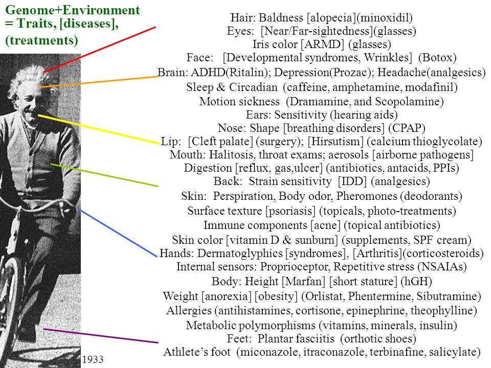 Genome+Environment = Traits, [diseases], (treatments) Hair: Baldness [alopecia](minoxidil) Eyes: [Near/Far-sightedness](glasses) Iris color [ARMD] (glasses) Face: [Developmental syndromes, Wrinkles] (Botox) Brain: ADHD(Ritalin); Depression(Prozac); Headache(analgesics) Sleep & Circadian (caffeine, amphetamine, modafinil) Motion sickness (Dramamine, and Scopolamine) Ears: Sensitivity (hearing aids) Nose: Shape [breathing disorders] (CPAP) Lip: [Cleft palate] (surgery); [Hirsutism] (calcium thioglycolate) Mouth: Halitosis, throat exams; aerosols [airborne pathogens] Digestion [reflux, gas,ulcer] (antibiotics, antacids, PPIs) Back: Strain sensitivity [IDD] (analgesics) Skin: Perspiration, Body odor, Pheromones (deodorants) Surface texture [psoriasis] (topicals, photo-treatments) Immune components [acne] (topical antibiotics) Skin color [vitamin D & sunburn] (supplements, SPF cream) Hands: Dermatoglyphics [syndromes], [Arthritis](corticosteroids) Internal sensors: Proprioceptor, Repetitive stress (NSAIAs) Body: Height [Marfan] [short stature] (hGH) Weight [anorexia] [obesity] (Orlistat, Phentermine, Sibutramine) Allergies (antihistamines, cortisone, epinephrine, theophylline) Metabolic polymorphisms (vitamins, minerals, insulin) Feet: Plantar fasciitis (orthotic shoes) Athletes foot (miconazole, itraconazole, terbinafine, salicylate) 1933