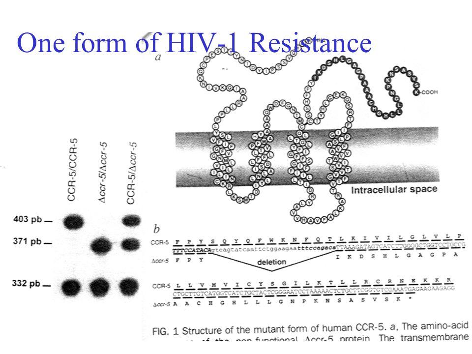 Association test for CCR-5 & HIV resistance Samson et al.