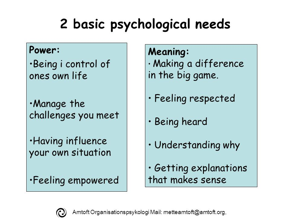 Amtoft Organisationspsykologi Mail: 2 basic psychological needs Power: Being i control of ones own life Manage the challenges you meet Having influence your own situation Feeling empowered Meaning: Making a difference in the big game.