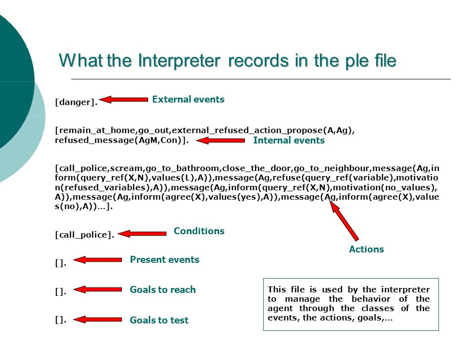 What the Interpreter records in the ple file [danger].