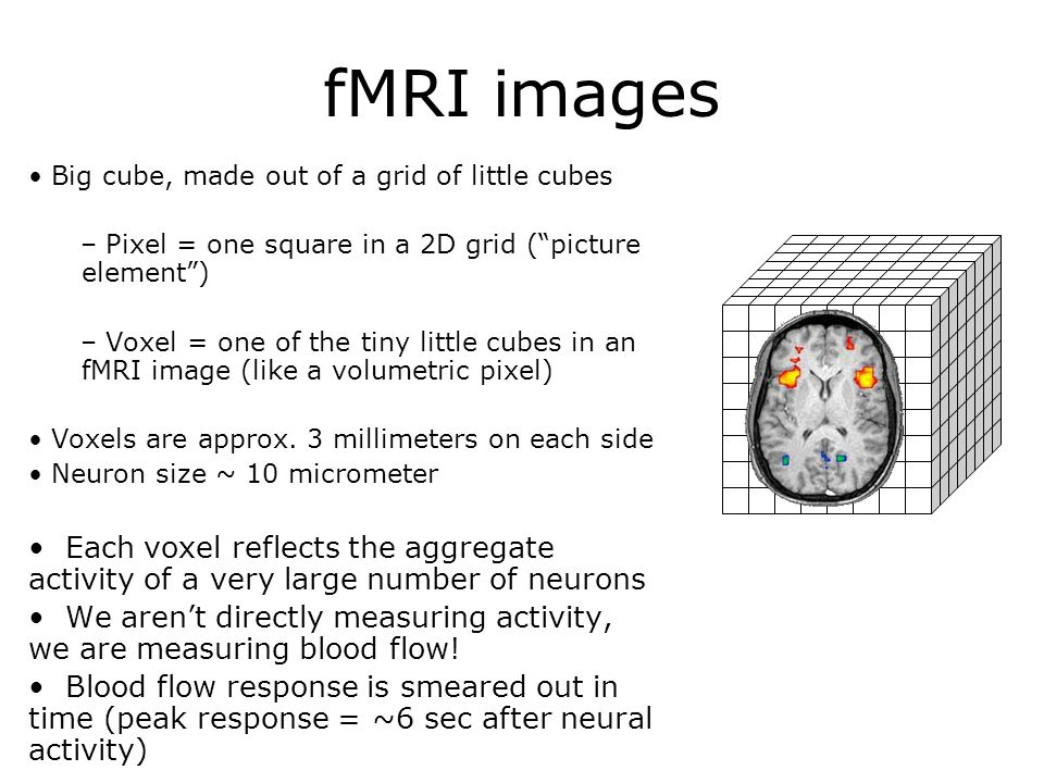 fMRI images Big cube, made out of a grid of little cubes – Pixel = one square in a 2D grid (picture element) – Voxel = one of the tiny little cubes in an fMRI image (like a volumetric pixel) Voxels are approx.