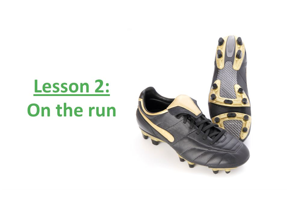 © Nuffield Foundation 2010 Lesson 2: On the run