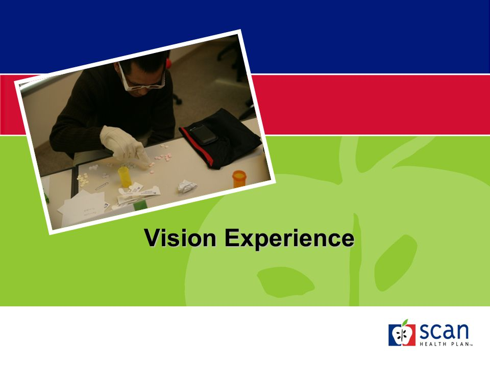 Vision Experience