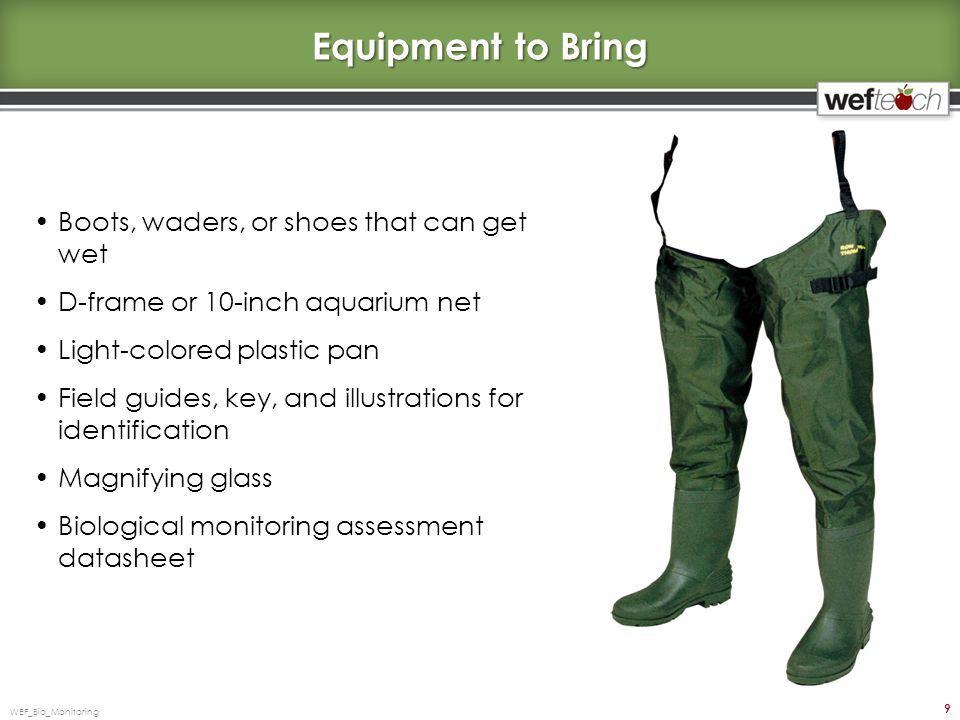 Equipment to Bring Boots, waders, or shoes that can get wet D-frame or 10-inch aquarium net Light-colored plastic pan Field guides, key, and illustrations for identification Magnifying glass Biological monitoring assessment datasheet WEF_Bio_Monitoring 9