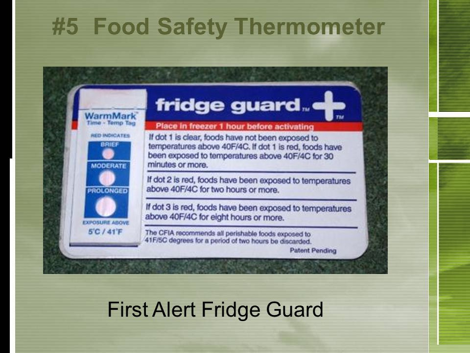 #5Food Safety Thermometer First Alert Fridge Guard