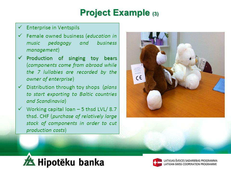 Project Example (3) Enterprise in Ventspils Female owned business (education in music pedagogy and business management) Production of singing toy bear