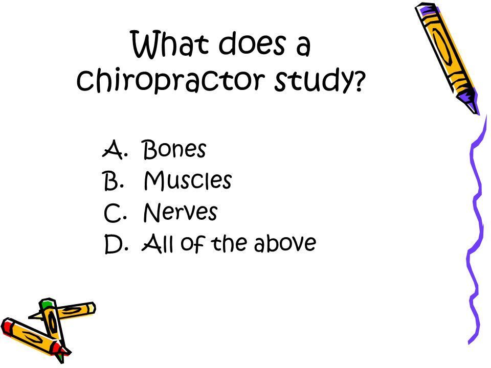 What does a chiropractor study A. Bones B. Muscles C. Nerves D. All of the above