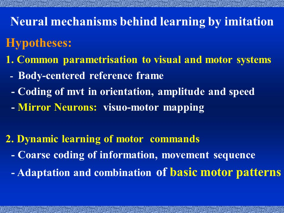 Neural mechanisms behind learning by imitation Hypotheses: 1.