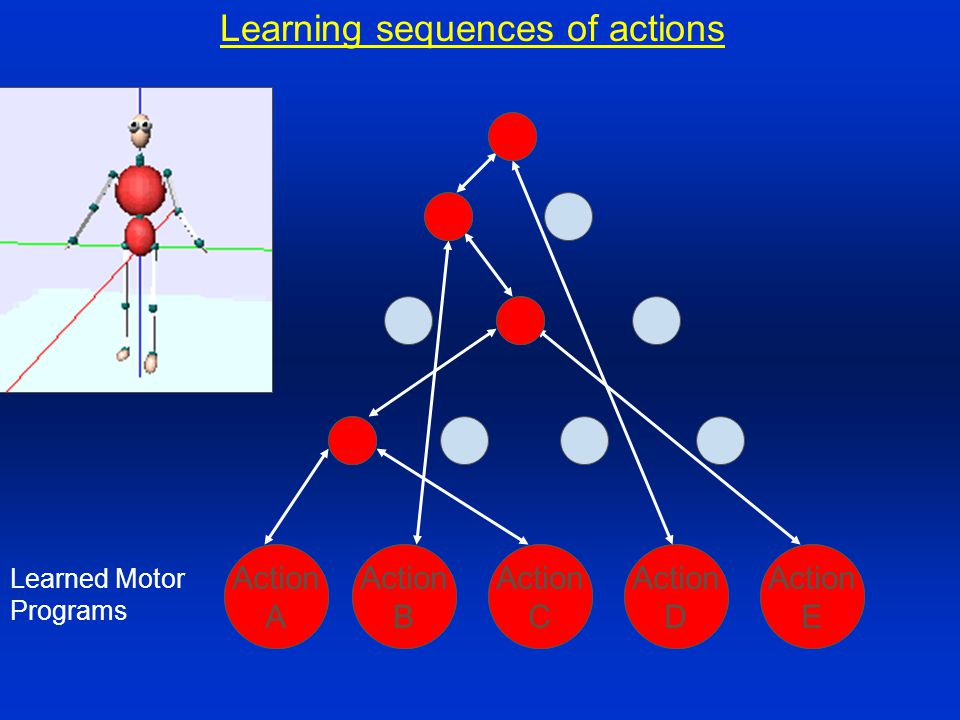 Learning sequences of actions Action E Action C Action D Action B Action A Learned Motor Programs Action A Action C Action E Action B Action D