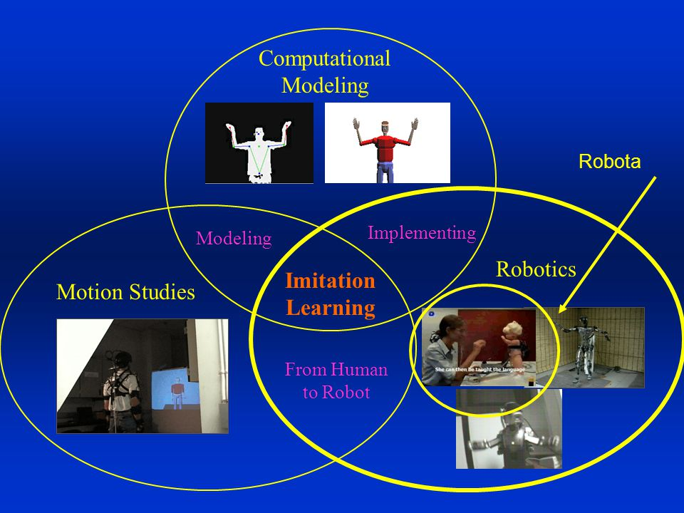 Robotics Motion Studies Computational Modeling Imitation Learning Modeling Implementing From Human to Robot Robota