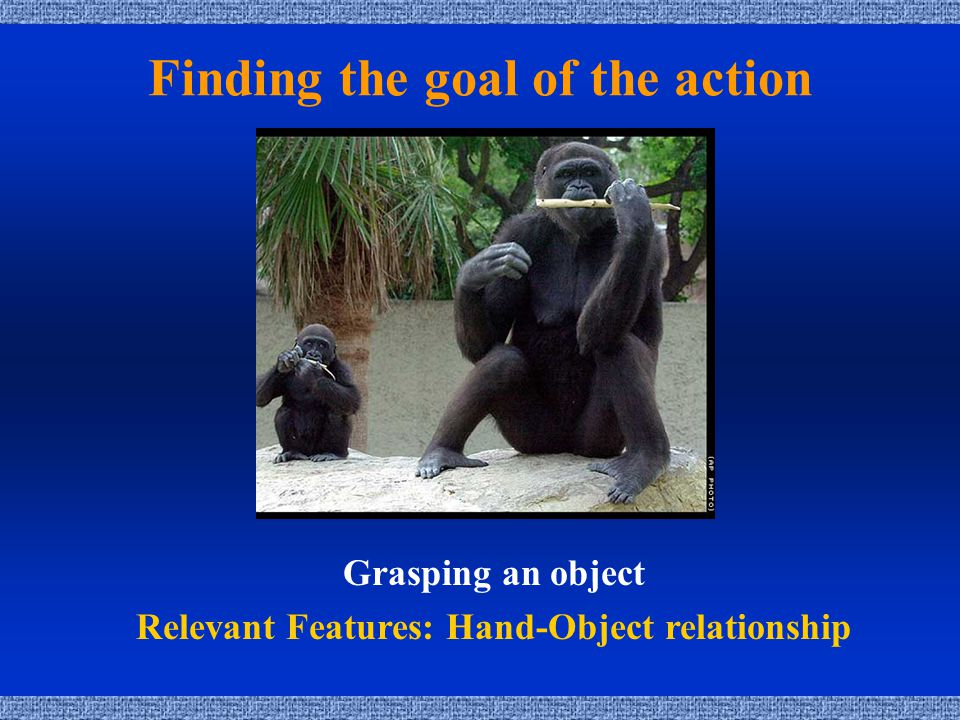 Finding the goal of the action Grasping an object Relevant Features: Hand-Object relationship