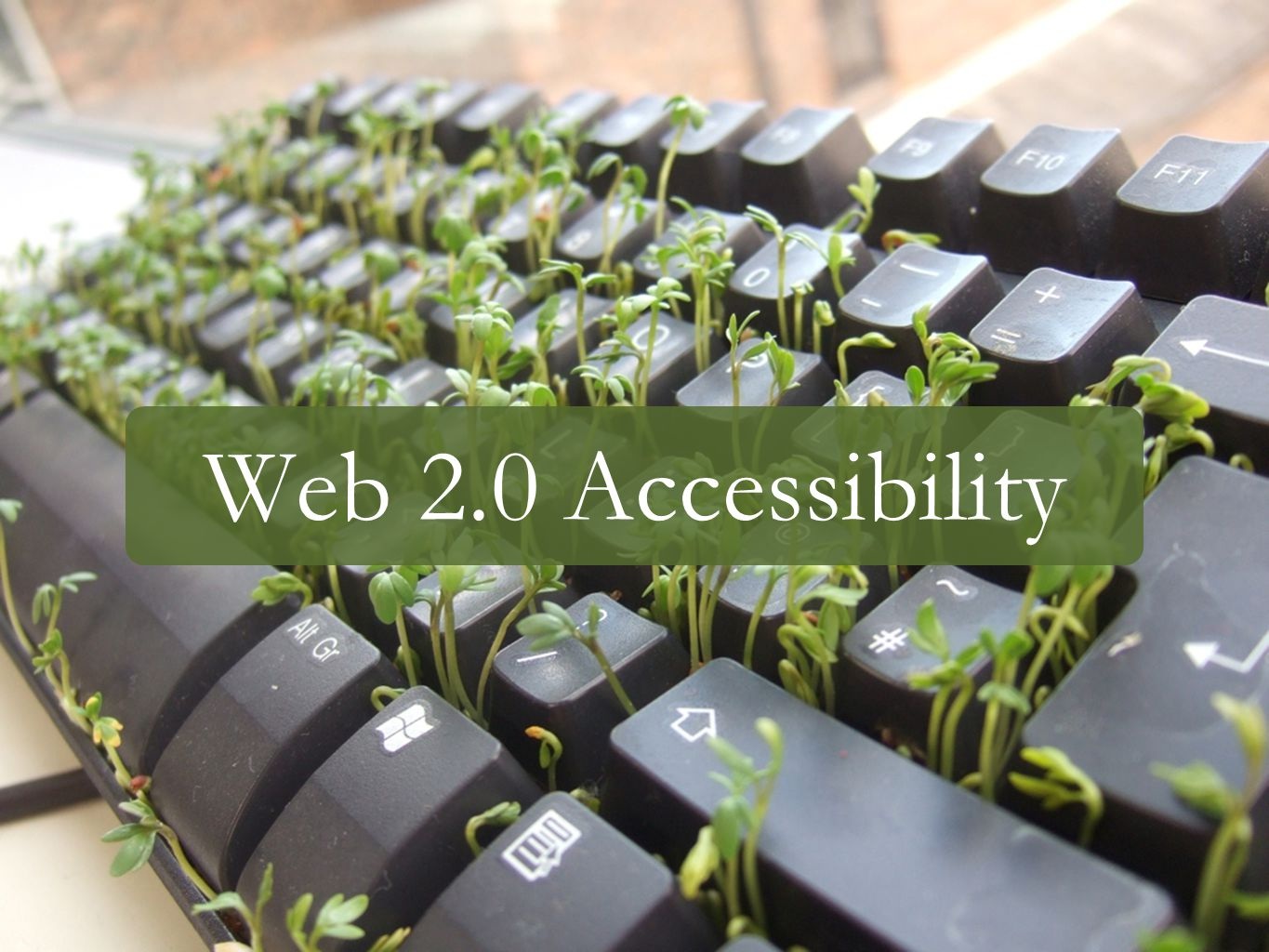 Web 2.0 Accessibility