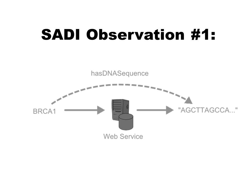SADI Observation #1:
