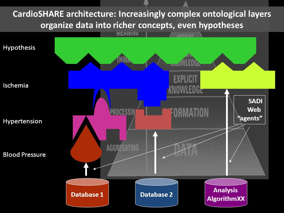 CardioSHARE architecture: Increasingly complex ontological layers organize data into richer concepts, even hypotheses Blood Pressure Hypertension Ischemia Hypothesis Database 1Database 2 Analysis AlgorithmXX SADI Web agents