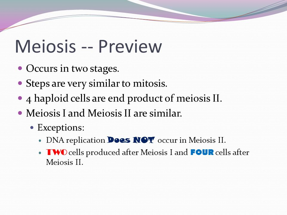 Meiosis -- Preview Occurs in two stages. Steps are very similar to mitosis.