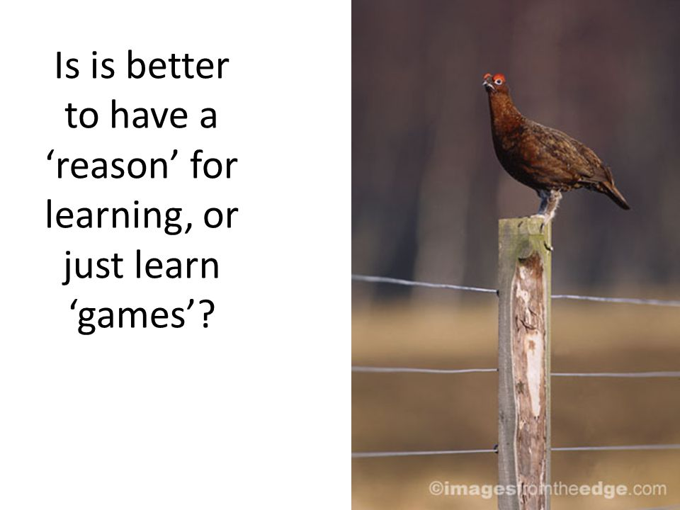 Is is better to have a reason for learning, or just learn games